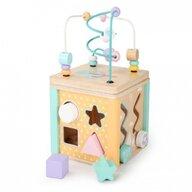 Ecotoys - Jucarie motrica Cub educational Cu labirint si sortator