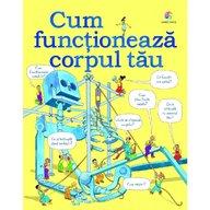 Corint - Cum functioneaza corpul tau