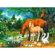 Ravensburger - Puzzle animale Animale la iaz Puzzle Copii, piese 100