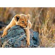 Ravensburger - Puzzle animale Micul leu Puzzle Copii, piese 200