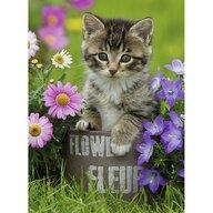 Ravensburger - Puzzle animale Pisicuta intre flori Puzzle Copii, piese 100